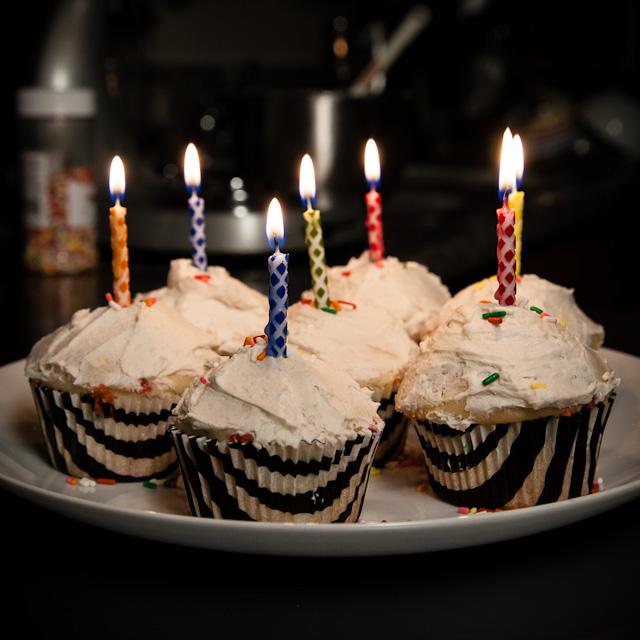 027-028-Centenial_Cupcakes (6 of 7)_640x640